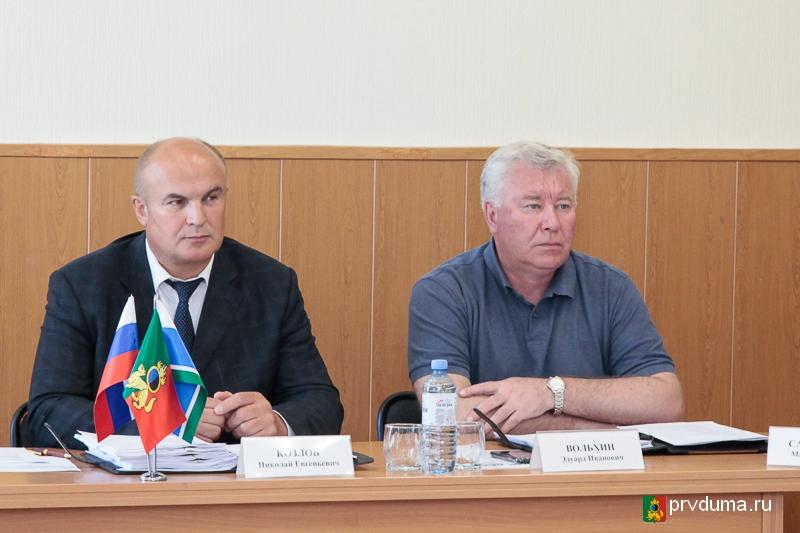Депутаты заслушали председателя комиссии по делам несовершеннолетних